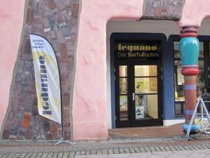 Leguano Shop Magdeburg