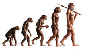 Paleo Steinzeit Ernährung